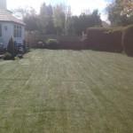 Garden Turf in Kirkham