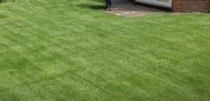 New-Lawn-Enquiry-In-Preston