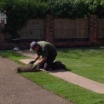 Turf Laying Service in Parbold