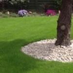 Buy Garden Turf in Fulwood