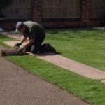 Lawn Turf in Ashton in Makerfield